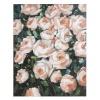 BGB Home S0110298 Õlimaal Roses Mänd (80 X 4 x 100 cm)