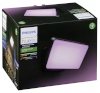 Philiips Hue Discover LED Floodlight must
