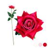 BGB Home Dekoratiivlill Roosa 1123649 (50 Cm) Värvus Roosa