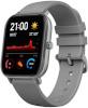 Xiaomi nutikell Amazfit GTS 47mm Lava Grey, hall
