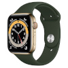Apple Watch Series 6 GPS + Cellular, 40mm Gold Stainless Steel Case with Cactus Green Sport Band